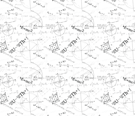 Equations (B&W) fabric by studiofibonacci on Spoonflower - custom fabric