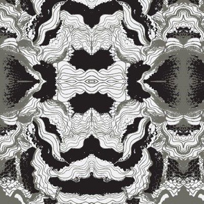 Waves-Black & White