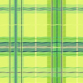 plaid_citrus