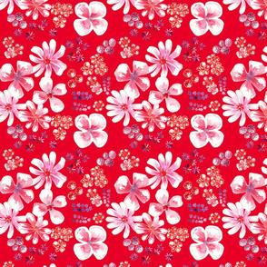 amélie fond rouge M