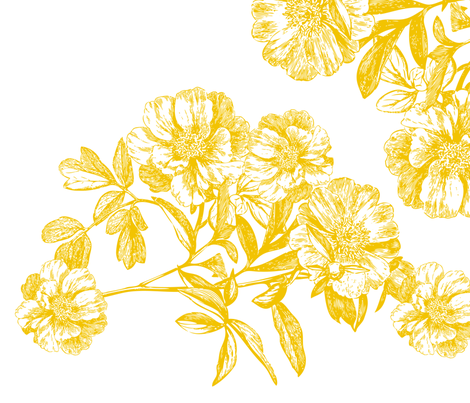 Flower Girl Gold Peonies fabric by stephanie on Spoonflower - custom fabric