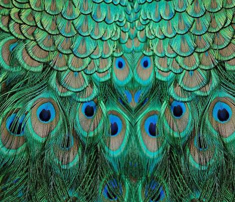 PEACOCK SKIRT fabric by bluevelvet on Spoonflower - custom fabric