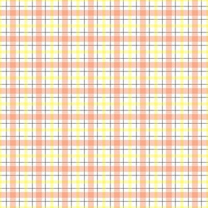 Orange_plaid