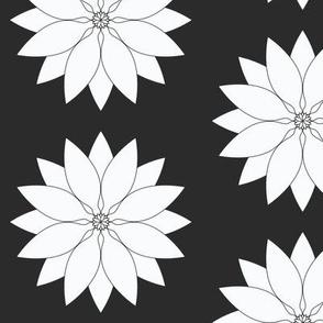 Large_White_Lotus