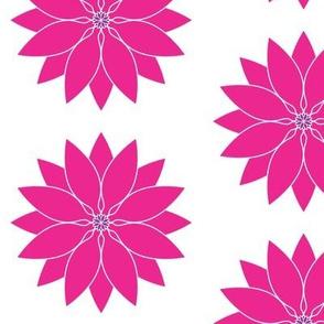 Large_White_Hot_Pink_Lotus