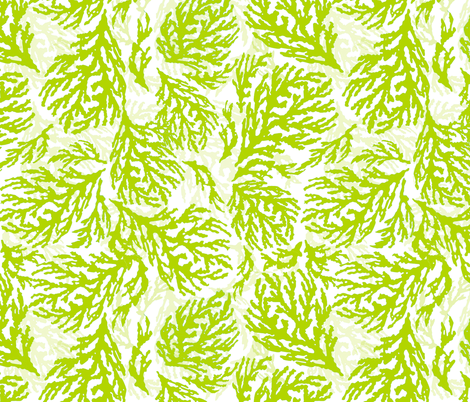 Coral Kiwi fabric by lulabelle on Spoonflower - custom fabric
