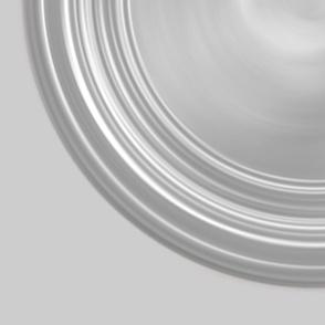 19_inch_Roundel_White_on_rice
