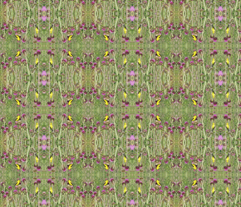 Goldfinches on Thistle fabric by ravynscache on Spoonflower - custom fabric