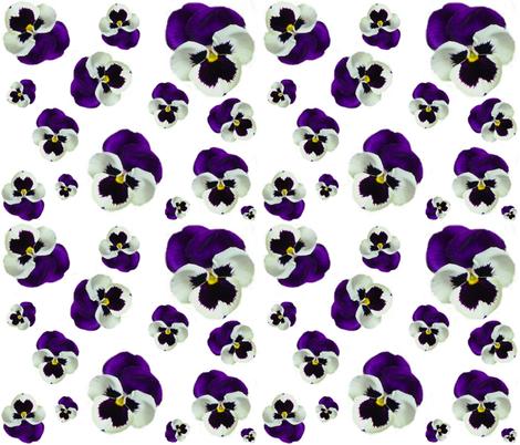 PURPLE PANSY fabric by bluevelvet on Spoonflower - custom fabric