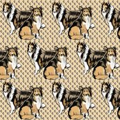 Rtwo_sable_collies__shop_thumb