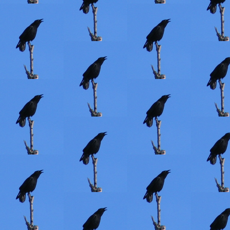 Crows fabric by ravynscache on Spoonflower - custom fabric
