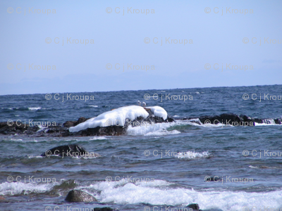 Lake Superior Stripe