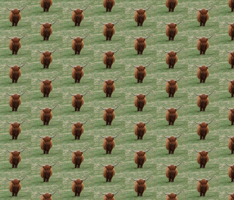 Highland Coo (Chestnut) fabric by ravynscache on Spoonflower - custom fabric