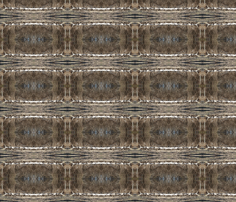 Winter Bark fabric by ravynscache on Spoonflower - custom fabric