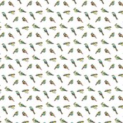Rbirds_pattern_col_wh-02_shop_thumb