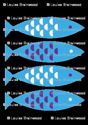 Newlyn Fish