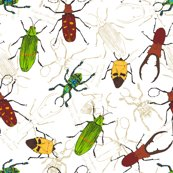 Rrrbeetle_pattern_scattered2_shop_thumb
