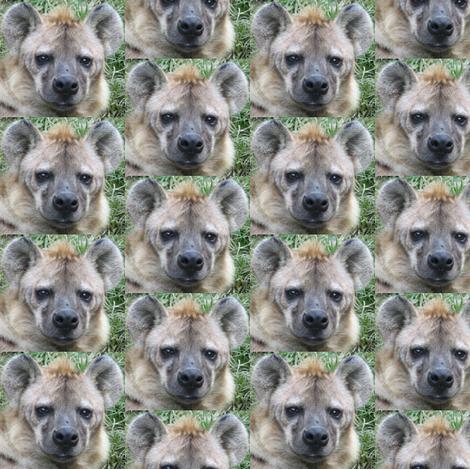 Hyena Faces fabric by ravynscache on Spoonflower - custom fabric