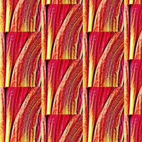 Petal Pattern 4