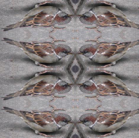 Sparrows fabric by ravynscache on Spoonflower - custom fabric