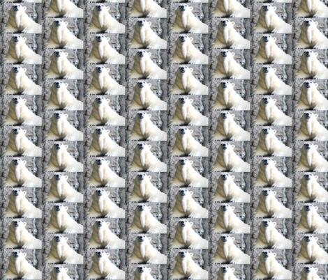 Polar Bear Stripes fabric by ravynscache on Spoonflower - custom fabric