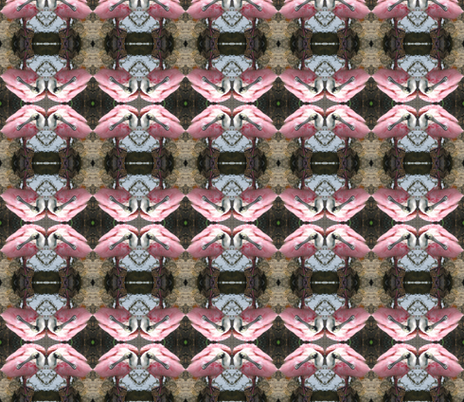 Roseate Spoonbill fabric by ravynscache on Spoonflower - custom fabric