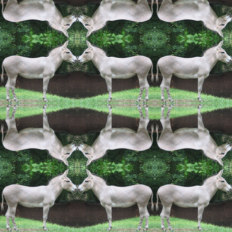 Mirrored Donkeys fabric by ravynscache on Spoonflower - custom fabric