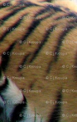 Tiger Stripe Geometric