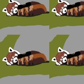 Rrbaby_red_pandas_shop_thumb