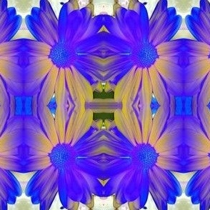 She Wore Blue Daisies...