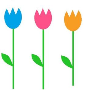 medium tulips