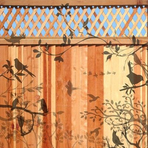 bird shadows on a fence