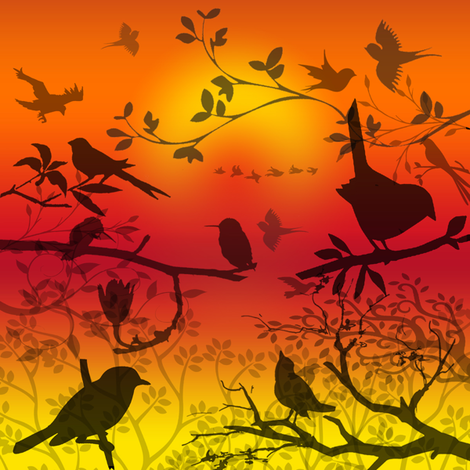 birds shadows sunset fabric by krs_expressions on Spoonflower - custom fabric