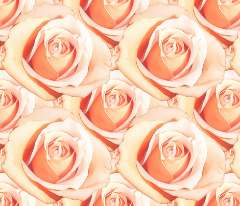 Romantic Roses ~ Pale ~ Medium fabric by peacoquettedesigns on Spoonflower - custom fabric