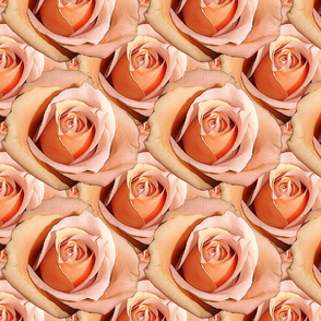 Romantic Roses ~Bright ~ Small