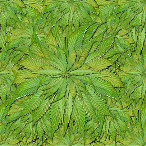 Plains of Mary Jane fabric by weedgarden on Spoonflower - custom fabric