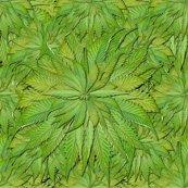 Rrweed_crop_shop_thumb
