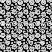 R50s_fabrics_lace_white_copy2desatsmall_copy_shop_thumb