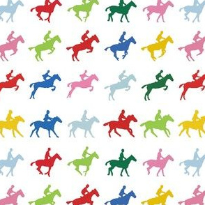 Muybridge Colored Jumper