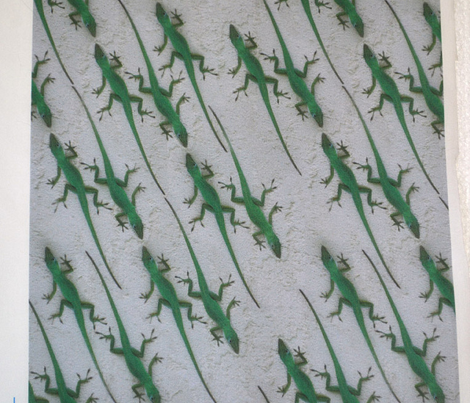 Green Lizard Lizards