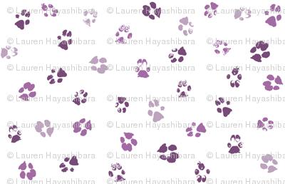 Paws Purple