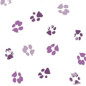 Paws Purple
