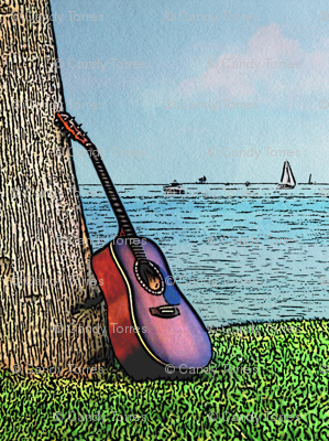Guitar curtain