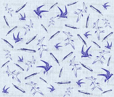 Terns and Petrels