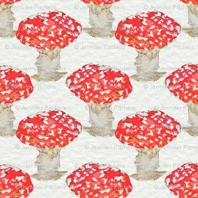 Mushrooms in Red