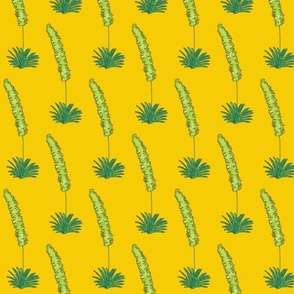 yellow background pampas grass