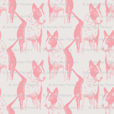 Old English Bull Terrier in Pink