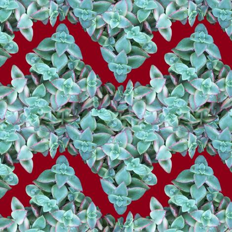 Succulent Chevron fabric by pond_ripple on Spoonflower - custom fabric