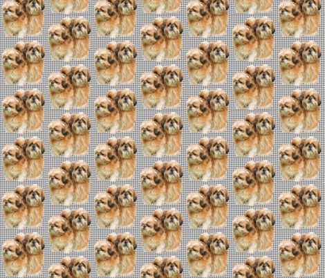 Blonde Shih Tzus fabric by dogdaze_ on Spoonflower - custom fabric