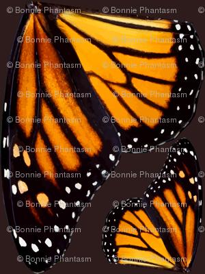 Giant Orange Monarch Butterfly Wings